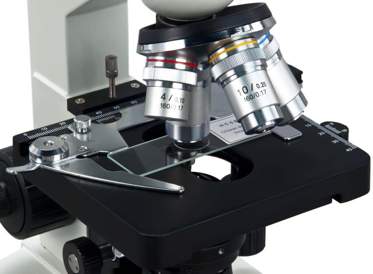 Top 10 USB Microscopes of 2019 | Video Review