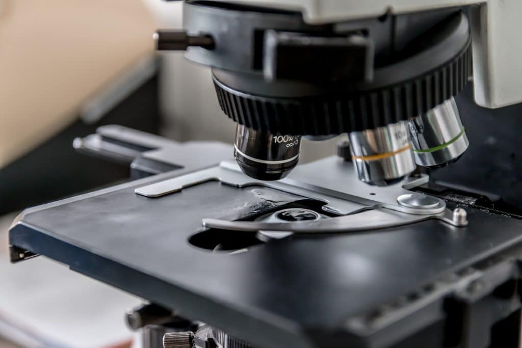 How To Use And Maintain The Microscope In An Effective Way